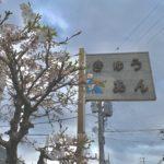 桜咲く新生活